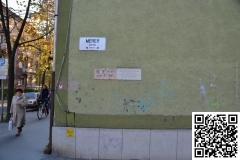 Arviz_Szeged_2011_12_resize
