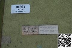 Arviz_Szeged_2015_5_resize